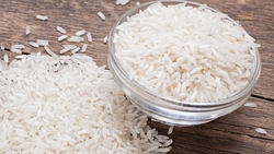 RICE from AGRI TRADE INDIA SERVICES PVT.LTD.
