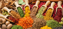 SPICES from MASALA KING EXPORTS TRADING PVT.LTD