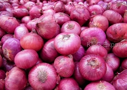 FRESH ONIONS from KNG EXPORTS
