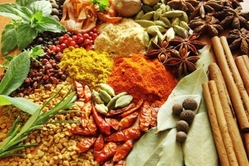 SPICES from MINAXI MULTI-PRODUCT (INDIA) PVT. LTD.