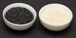Seeds from MULJI DEVSHI EXPORT PVT. LTD