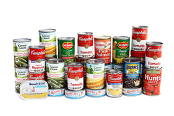 CANNED FOOD from OBSON INTERNATIONAL PRIVATE LIMITED
