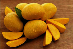 ALPHONSO MANGOES from RAIEN TRADING CORPORATION