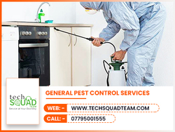 PEST CONTROL SERVICES from TECHSQUADTEAM
