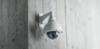 SECURITY SERVICES & EQUIPMENT SUPPLIERS